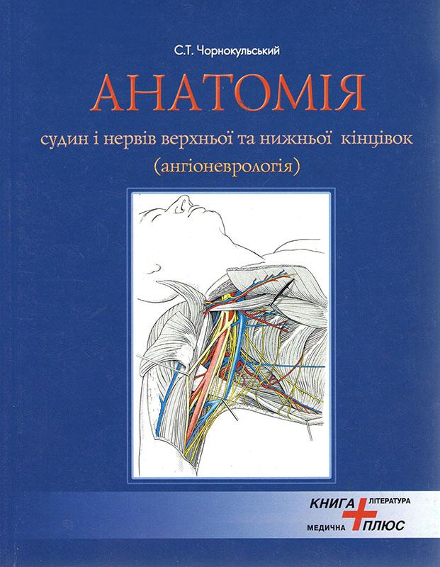 Анатомія судин і нервів верхньої та нижньої кінцівок (ангіоневрологія)