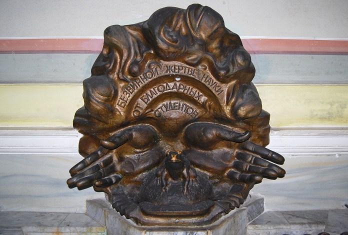 """Пам'ятник жабі. Напис повідомляє """"Невинній жертві науки від вдячних студентів"""". Фото Фотографії старого Львова"""