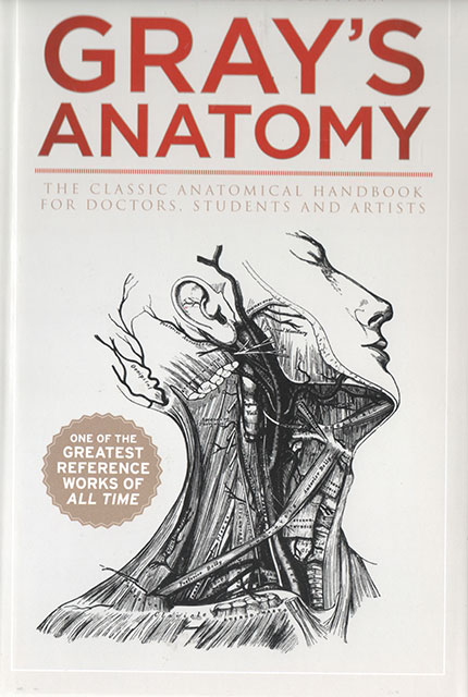Anatomy Descriptive and Surgical